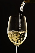 White Wine Pouring from Bottle into Glass; White Background