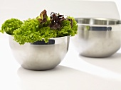 Lollo biondo in stainless steel bowls