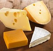 Vier Käsestücke (Emmentaler, Gouda, Cheddar und Brie)