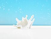 Splash of milk