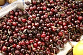 Dark Cherries at Farmer's Market in Bantry, Ireland