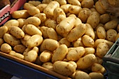 Organic Potatoes at Farmer's Market in Bantry, Ireland