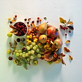 An autumnal arrangement of grapes, pears, rosehips and pomegranates