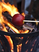 Apples roasting over an open flame