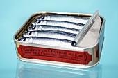 Chocolate sardines in the tin
