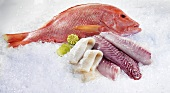 Whole Red Snapper, Parrot fish fillet and Kingklip fillet