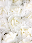 White sugar roses for decorating cakes