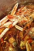 Cooking crustacean broth