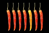 Red and yellow jalapeños against a black background
