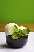Two scoops of peppermint ice cream with fresh mint leaves