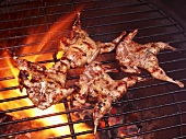 Butterflied Quail on the Grill