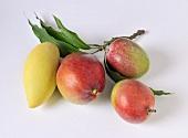 Various mangos
