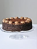 A chocolate cake with chocolate strands