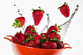 Fresh Strawberries and Water Splash; In a Bowl