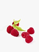 Six raspberries with leaves