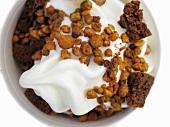 Yogurt ice cream with crunchies and cookies