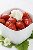 Strawberries with vanilla sugar and cream