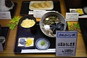 Display of japanese dishes