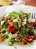 Cress salad with broad beans, tomatoes and parmesan