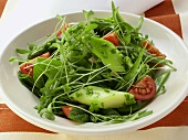 Cress salad with tomatoes and green asparagus