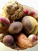 Various types of root vegetables in bowl
