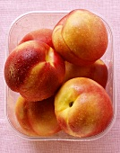 Nectarines with drops of water in plastic container from above