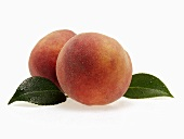 Two fresh peaches with leaves and drops of water