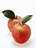 Two red apples with stalk, leaf and drops of water