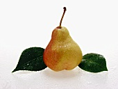 Pear with drops of water and leaves