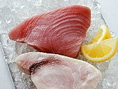 Swordfish and tuna on crushed ice