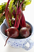 Beetroot with leaves in blue and white cup