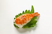 Nigiri sushi with shrimp on shiso leaf
