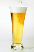Pouring lager