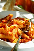 Penne rigate with tomato sauce and Parmesan