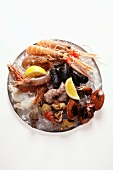 Seafood on plate of crushed ice