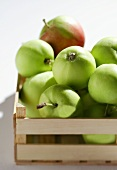 Granny Smith apples in crate