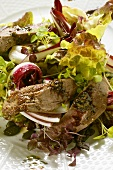 Autumn salad with roast venison fillets and pumpkin seed pesto