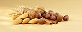 Nüsse, Mandeln, Zimtstangen und Ähren