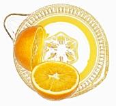 Oranges in citrus squeezer