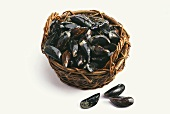 Fresh mussels in basket