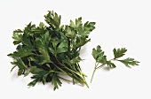 A bunch and a sprig of flat-leaf parsley