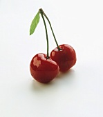A pair of freshly washed cherries