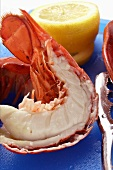 Cooked lobster with slices of lemon