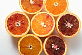 Several blood orange halves (overhead view)