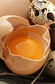Eggs, egg broken open and quail's eggs on straw