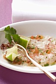 Carpaccio of raw shrimps with limes and coriander leaves
