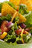 Mexican salad with vegetables and taco chips (close-up)