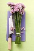Chive flowers and knife on purple chopping board