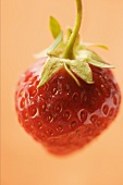 A Single Ripe Strawberry