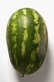 Oval watermelon